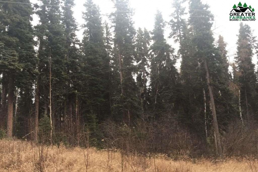 1400 WILLISTON WAY, Fairbanks, Alaska 99709, ,Land,For Sale,WILLISTON WAY,143723