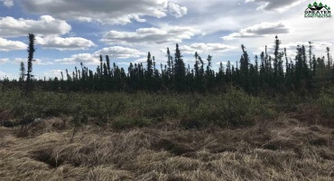 6080 RICHARDSON HIGHWAY, Salcha, Alaska 99714, ,Land,For Sale,RICHARDSON HIGHWAY,143919