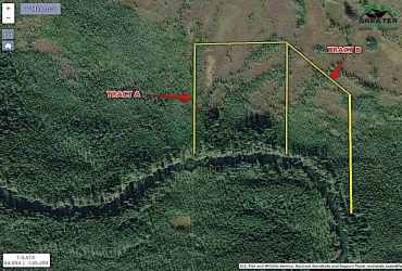 NHN CLEARWATER RIVER, Big Delta, Alaska 99737, ,Land,For Sale,CLEARWATER RIVER,144867