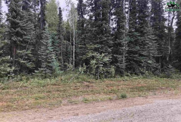 nhn ANACONDA COURT, North Pole, Alaska 99705, ,Land,For Sale,ANACONDA COURT,144901