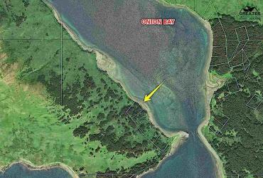 NHN RASPBERRY DRIVE, KODIAK, Alaska 99615, ,Land,For Sale,RASPBERRY DRIVE,144906