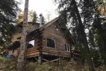 1981 BLUEGRASS DRIVE, Fairbanks, Alaska 99709, 1 Bedroom Bedrooms, ,1 BathroomBathrooms,Residential,For Sale,BLUEGRASS DRIVE,145218
