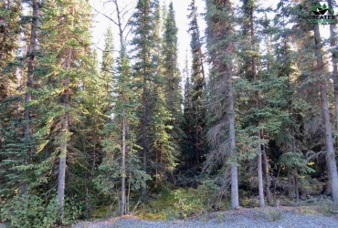 8B SANFORD DRIVE, Tok, Alaska 99780, ,Land,For Sale,SANFORD DRIVE,145242