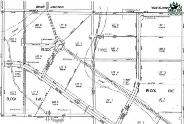 Lot 3 WHITMAN ROAD, North Pole, Alaska 99705, ,Land,For Sale,WHITMAN ROAD,143160