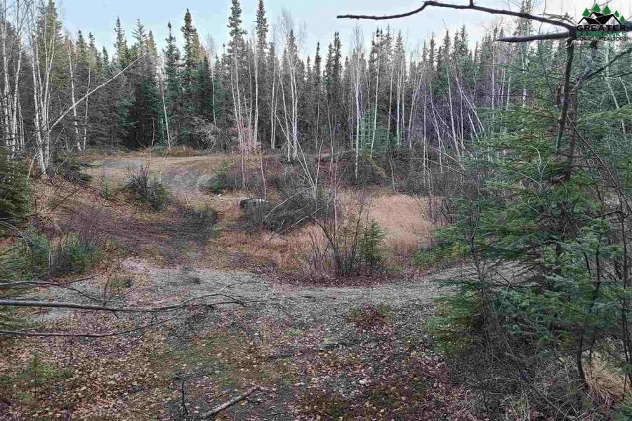 NHN LYLE AVENUE, North Pole, Alaska 99705, ,Land,For Sale,LYLE AVENUE,145281
