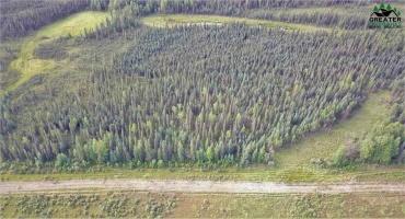 NHN REPP ROAD, North Pole, Alaska 99705, ,Land,For Sale,REPP ROAD,145285