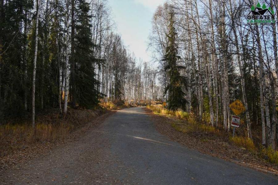 311 HILLSIDE DRIVE, Fairbanks, Alaska 99712, ,Land,For Sale,HILLSIDE DRIVE,145296