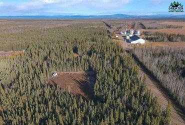 NHN CHASE ROAD, Delta Junction, Alaska 99737, ,Land,For Sale,CHASE ROAD,145309