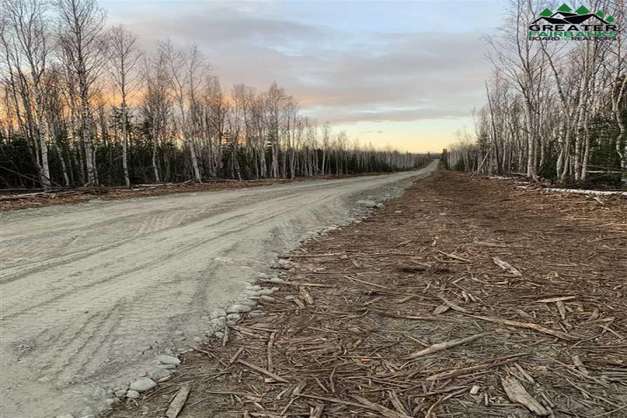 L1 BA RAYA RD, Delta Junction, Alaska 99737, ,Land,For Sale,RAYA RD,145347