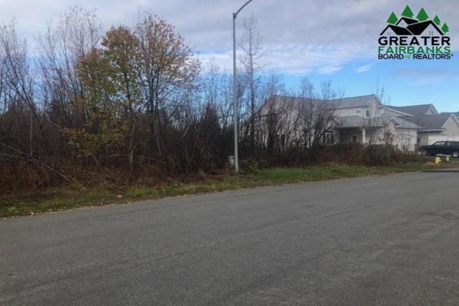 NHN CHIEF ALEXANDER DRIVE, Fairbanks, Alaska 99701, ,Land,For Sale,CHIEF ALEXANDER DRIVE,145397