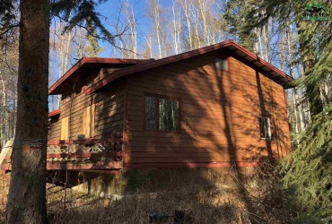 NHN PARKS HIGHWAY, Nenana, Alaska 99760, 2 Bedrooms Bedrooms, ,1 BathroomBathrooms,Residential,For Sale,PARKS HIGHWAY,145437