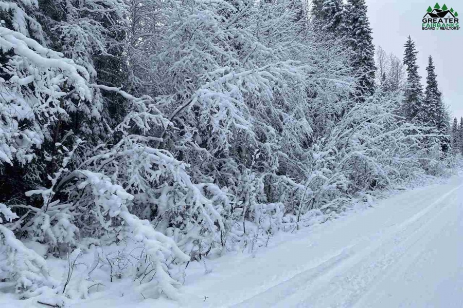 NHN Lot 16 LUCILLE AVENUE, North Pole, Alaska 99705, ,Land,For Sale,LUCILLE AVENUE,145514