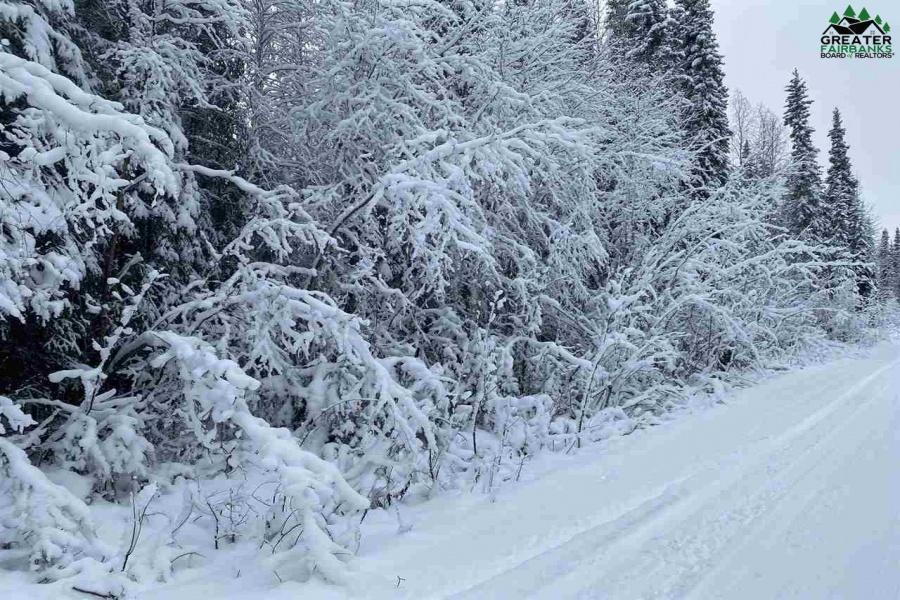 NHN Lot 10 LUCILLE AVENUE, North Pole, Alaska 99705, ,Land,For Sale,LUCILLE AVENUE,145536