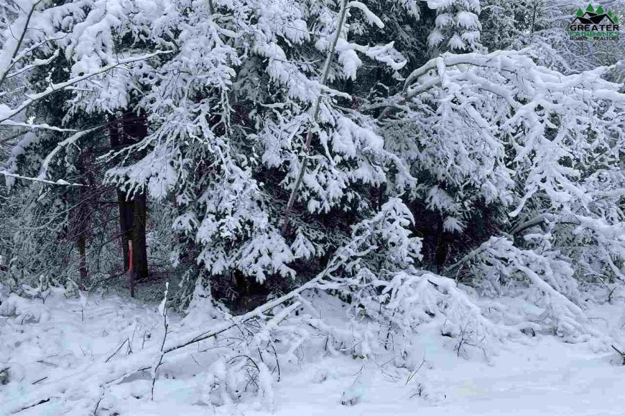 NHN Lot 11 LUCILLE AVENUE, North Pole, Alaska 99705, ,Land,For Sale,LUCILLE AVENUE,145537