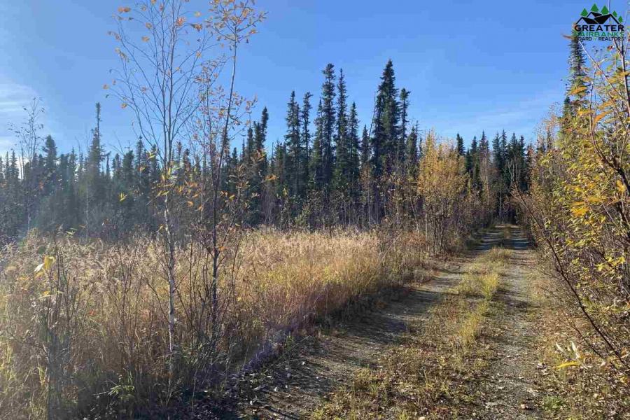 NHN SALCHA STAR*, Salcha, Alaska 99714, ,Land,For Sale,SALCHA STAR*,145561