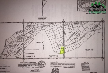 NHN LEUTHOLD DRIVE, Fairbanks, Alaska 99709, ,Land,For Sale,LEUTHOLD DRIVE,145865