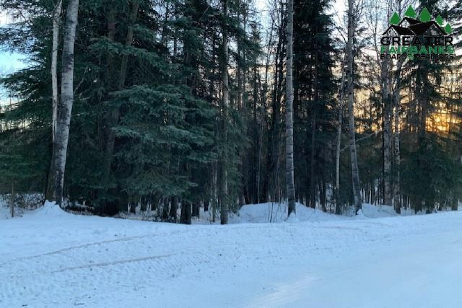 Lot 4 Blk E ARCTIC TERN DRIVE, Fairbanks, Alaska 99709, ,Land,For Sale,ARCTIC TERN DRIVE,145921