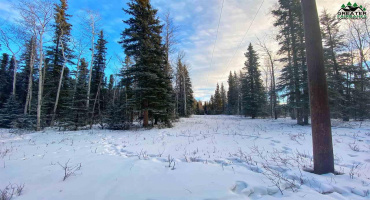 Lot 7 Block C LENG ROAD, Delta Junction, Alaska 99737, ,Land,For Sale,LENG ROAD,146000