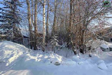 NHN LAURENE STREET, Fairbanks, Alaska 99701, ,Land,For Sale,LAURENE STREET,146082