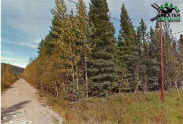 Nhn LEIGH, Delta Junction, Alaska 99731, ,Land,For Sale,LEIGH,146302