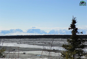 L1A-1B SPENGLER ROAD, Delta Junction, Alaska 99737, ,Land,For Sale,SPENGLER ROAD,146707