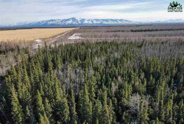 T2 AGRICULTURE WAY, Delta Junction, Alaska 99737, ,Land,For Sale,AGRICULTURE WAY,146871